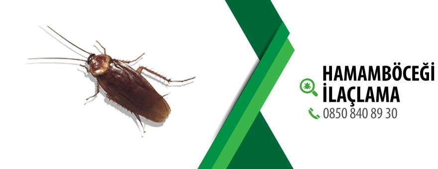 Hamamböceği İlaçlama